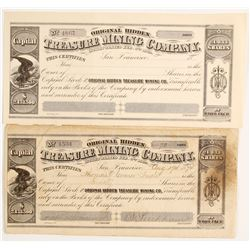 Original Hidden Treasure Mining Company  (88110)