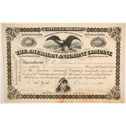 American Antimony Company Stock  (86763)