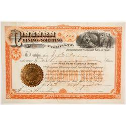 Niagara Mining and Smelting Company Stock  (86745)