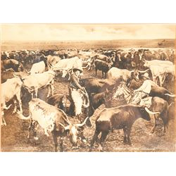 101 Ranch Postcard and Photo Enlargement  (60433)