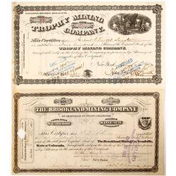 2 1880's Mining Stocks  (65015)