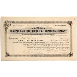 Tonopah Cash Boy Consolidated Mining Co. Stock Certificate  (62813)