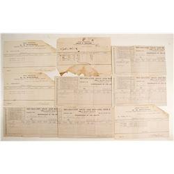 Nevada City Assay Receipts  (63267)