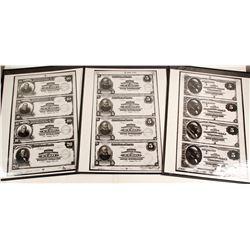 Northern Nevada Banknotes Repros  (76653)