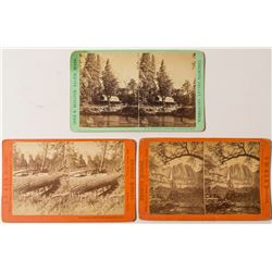 Yosemite Stereoview Collection: Moulton  (50674)