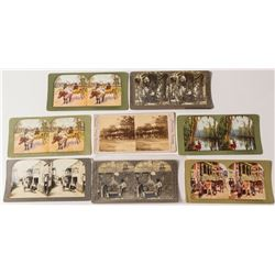 Florida Stereoview Collection  (50689)