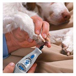 Dremel Nail Grooming Kit
