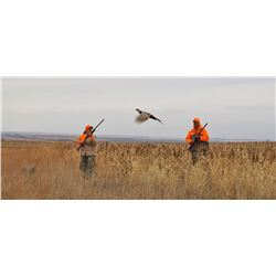 20 Bird Guide hunt at The Bluffs