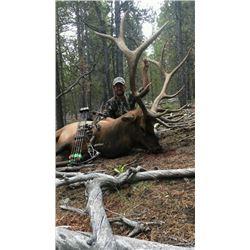 Drop Camp Elk Hunt for 2 Hunters GMU 46