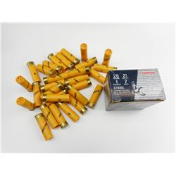 20 GAUGE SHOTGUN SHELLS ASSORTED