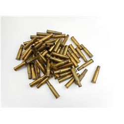 .303 SAVAGE BRASS