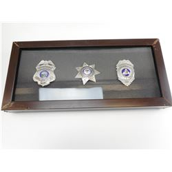U.S. ORGANIZED LAW ENFORCEMENT BADGES IN WOODEN SHADOW BOX