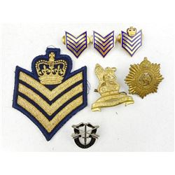 ASSORTED CANADIAN & US MILITARY CAP BADGES & SERVICE STRIPES