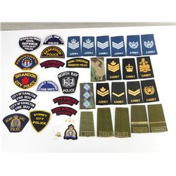 ASSORTED EPAULETTES & BADGES