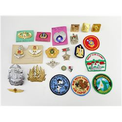 ASSORTED INTERNATIONAL BADGES & PINS