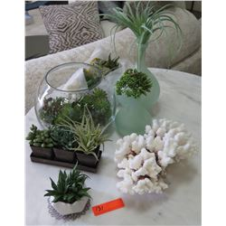 Misc. Staging Items: Glass Fishbowl Vase, Green Glass Vases, Faux Succulents, Coral