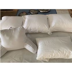 Misc. Pillows (3 Lrg Square Pillows, 1 Standard, 1 Reading Pillow).  was used only for staging, howe