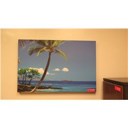 Photographic Art on Stretched Canvas: Palm Trees