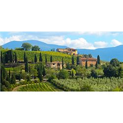 Culinary Experience in Tuscany Italy  For 2 For 5 Nights with Cooking Class with Chef Ryan Haley