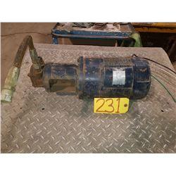 Hydraulic Pump 110/220v
