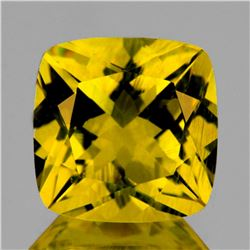 Natural Golden Yellow Beryl (Heliodoor) 8.00 MM - FL