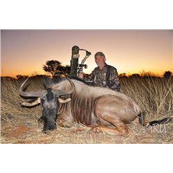 7 Day Namibian Plains Game Safari for 2 Hunters