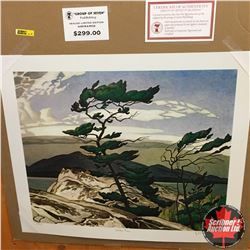 "CHOICE OF 10: Limited Edition Print : ""White Pine"" Group of Seven 231/777"