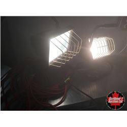 2 Halogen Work Lights & Extension Cord