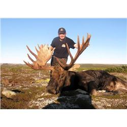 Canadian Moose and Black Bear Hunt