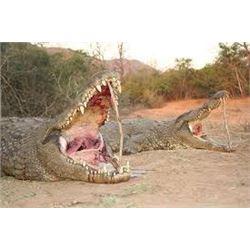 Crocodile Hunt on the Zambezi River, Cahorra Bassa, Mozambique