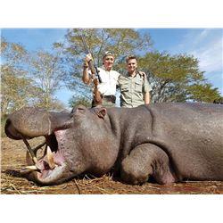 Free Range Hippo Hunt