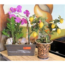 Faux Plants: Orchid and Lemon Tree