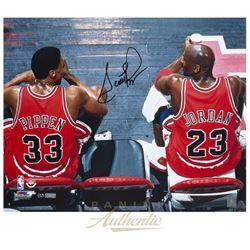 "Scottie Pippen Signed Bulls ""Dynasty"" 16x20 Photo (Panini COA)"
