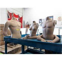 1 Female & 2 Male Torso Mannequins