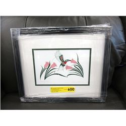 "Richard Shorty Framed Print ""Hummingbird"""