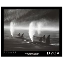 Orca Mist by Wyland