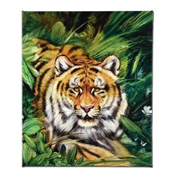 Tiger Surprise by Katon, Martin