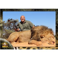 South Africa Male Lion Hunt