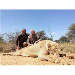 South Africa Female Lion Hunt