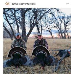 Colorado Turkey Hunt