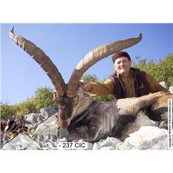 Mountain Hunt in Spain