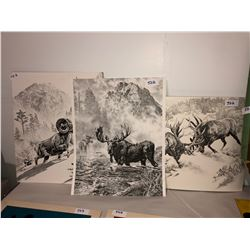 "3 Black & white wildlife art 16""x20"""