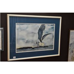 "Framed watercolour painting of a seagull in flight, signed by artist Ina Von Westing, 12"" X 18"""
