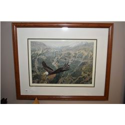 "Framed limited edition print titled ""Freedom"" pencil signed by artist Paul Rankin, 877/3750"