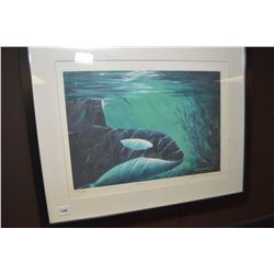 """Framed limited edition print """"Orca"""" pencil signed by artist Brian Wallace 101/750"""