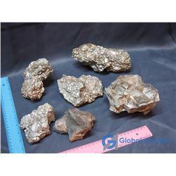 Sedimentary Rocks w/ Shell Inclusions