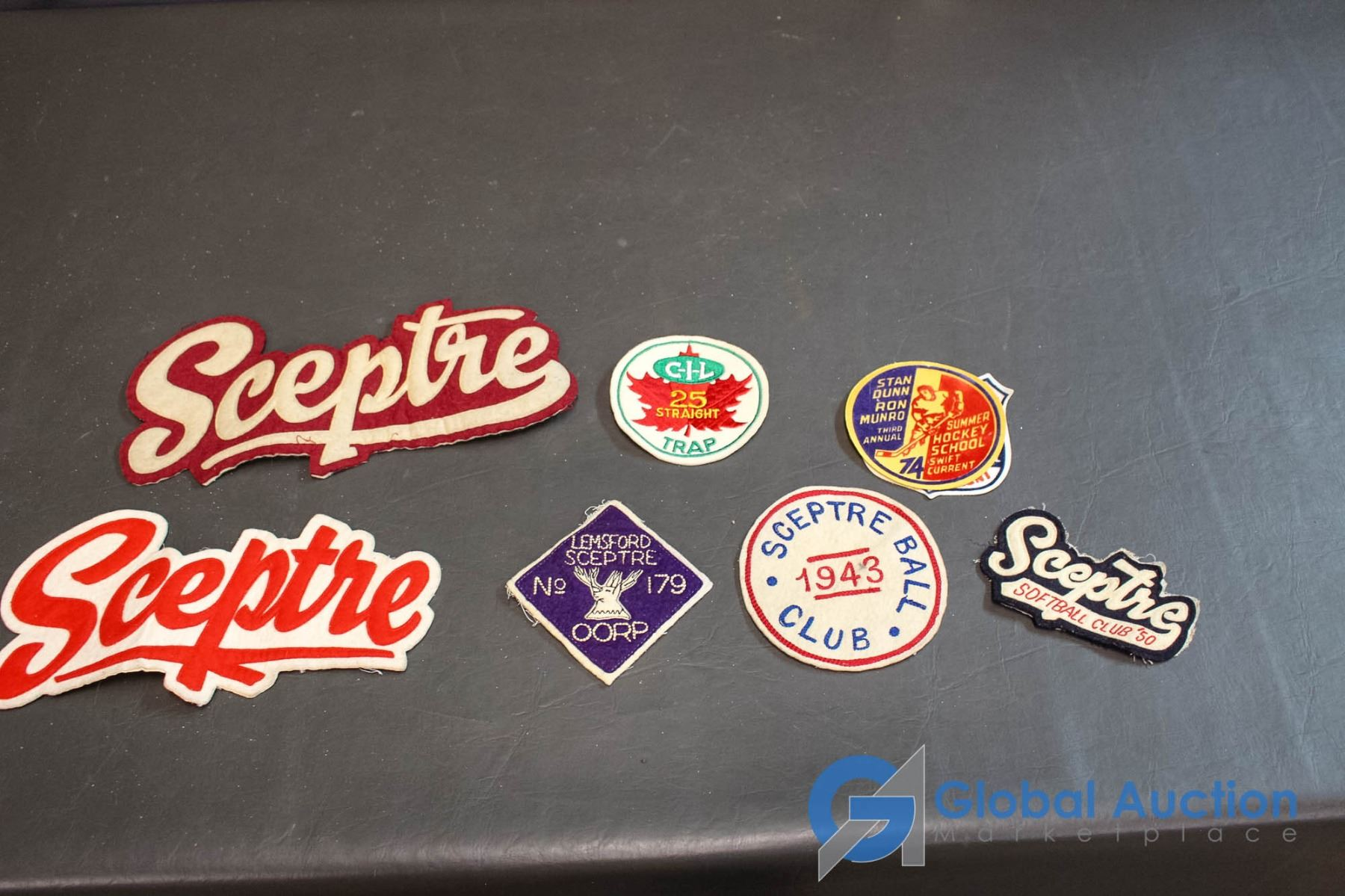 Ceptr (8) assorted vintage patches