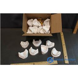 Plaster Casts of Upper & Lower Teeth