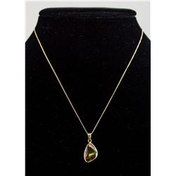 10K Yellow Gold  Ammolite Necklace RV $1000