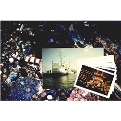 Lot of original color 29 photos of S.S. Central America salvage, recoveries, outfitting of the salva
